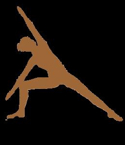 Expérience du Hatha Yoga appelé aussi Haṭha Yoga de B.K.S. iyengar